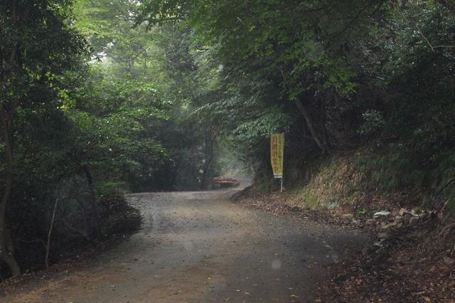 事件 犬鳴峠 【閲覧注意】最恐の心霊スポット「犬鳴トンネル」へ潜入…『犬鳴村』は実在した<写真36点>|最新の映画ニュースならMOVIE WALKER